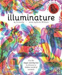 bokomslag Illuminature
