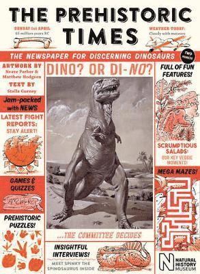bokomslag Prehistoric times