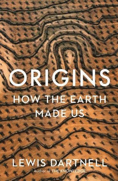 bokomslag Origins: How The Earth Made Us