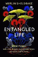 bokomslag Entangled Life: How Fungi Make Our Worlds, Change Our Minds and Shape Our Futures