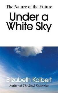 bokomslag Under a White Sky