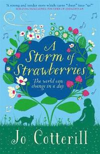 bokomslag A Storm of Strawberries