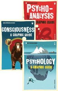 bokomslag Introducing Graphic Guide box set - Know Thyself (EXPORT EDITION)