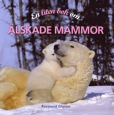 bokomslag En liten bok om älskade mammor
