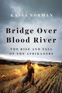 bokomslag Bridge Over Blood River