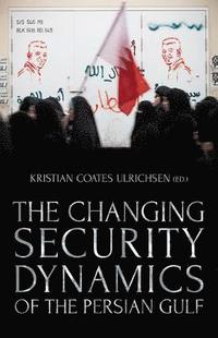 bokomslag Changing security dynamics of the persian gulf
