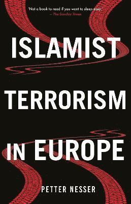 bokomslag Islamist Terrorism in Europe