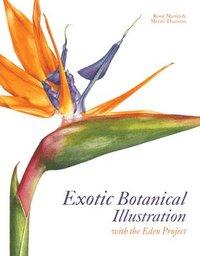bokomslag Exotic Botanical Illustration