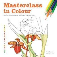 bokomslag Masterclass in Colour