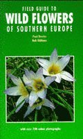 bokomslag Field Guide to Wild Flowers of Southern Europe