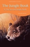 bokomslag The Jungle Book &; The Second Jungle Book