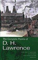 bokomslag The Complete Poems of D.H. Lawrence