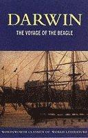 bokomslag The Voyage of the Beagle