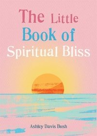 bokomslag The Little Book of Spiritual Bliss
