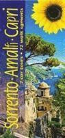 bokomslag Sorrento, Amalfi and Capri: 7 Car Tours, 72 Walk Segments