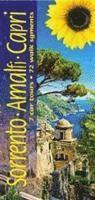 bokomslag Sorrento, Amalfi and Capri: 7 Car Tours, 72 Walk Segments