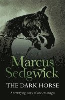 bokomslag The Dark Horse
