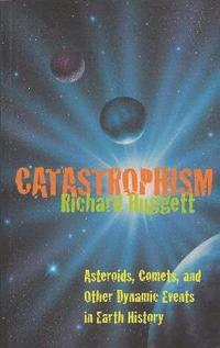 bokomslag Catastrophism