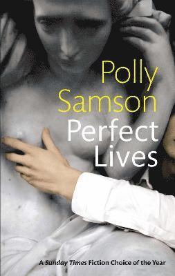 bokomslag Perfect Lives