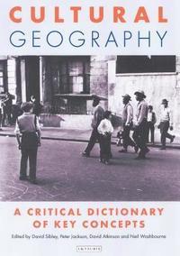 bokomslag Cultural Geography