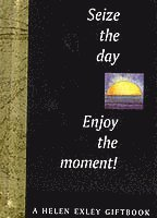 bokomslag Seize the Day! Enjoy the Moment!