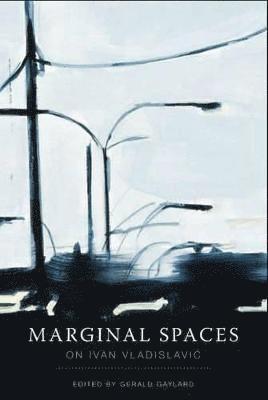 bokomslag Marginal Spaces