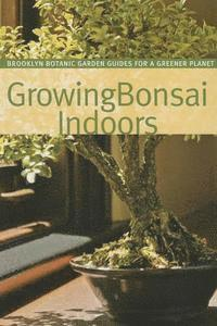 bokomslag Growing Bonsai Indoors