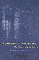 bokomslag Remnants of Auschwitz