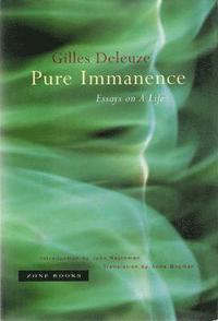 bokomslag Pure Immanence