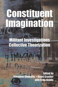 bokomslag Constituent Imagination