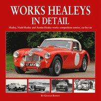 bokomslag Works Healeys In Detail