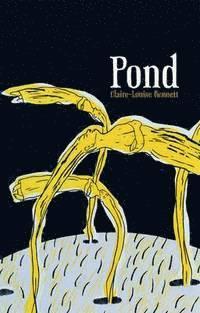 bokomslag Pond
