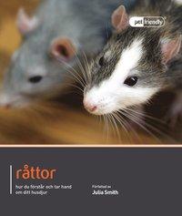 Råttor : hur du förstår och tar hand om ditt husdjur
