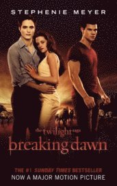 bokomslag Breaking Dawn Film Tie In