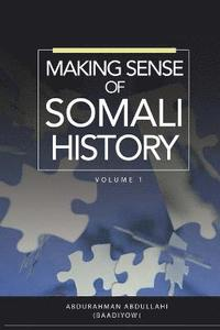 bokomslag Making Sense of Somali History