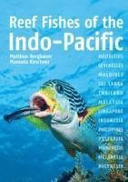 bokomslag Reef Fishes of the Indo-Pacific