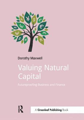 bokomslag Valuing natural capital - future proofing business and finance