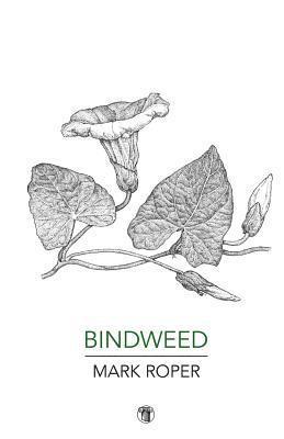 bokomslag Bindweed