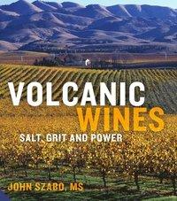 bokomslag Volcanic Wines