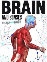 bokomslag Brain and Senses