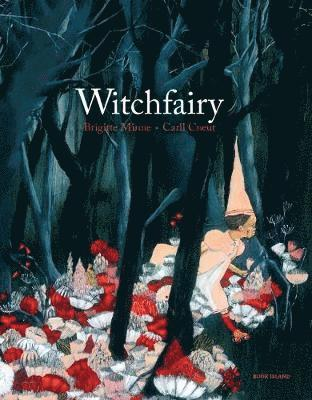 bokomslag Witchfairy