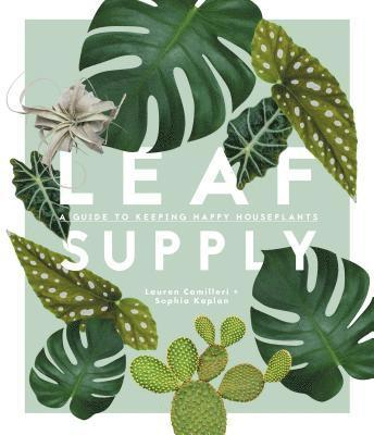 bokomslag Leaf Supply: A guide to keeping happy house plants