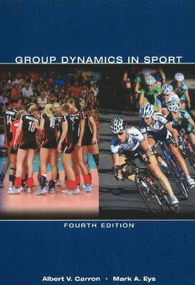 bokomslag Group dynamics in sport