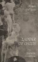 bokomslag Ladder of Oaths