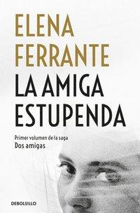 bokomslag La Amiga Estupenda / My Brilliant Friend