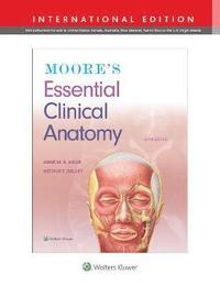 bokomslag Moore's Essential Clinical Anatomy