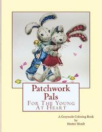 bokomslag Patchwork Pals: For The Young At Heart