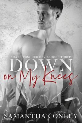 bokomslag Down on My Knees: Silver Tongued Devils Series