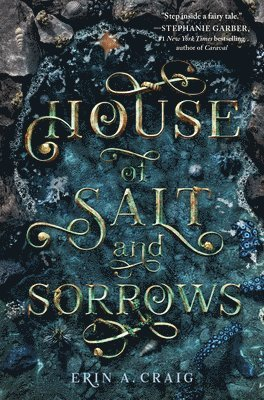 bokomslag House of Salt and Sorrows