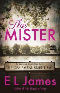 bokomslag The Mister